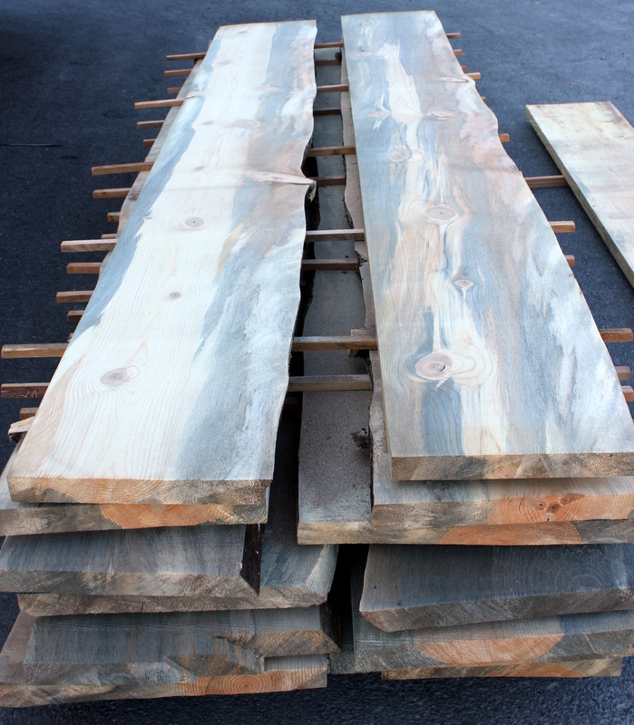 Rough Sawn Beetle Killed Blue Stain Pine Slabs