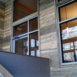 beetle kill pine wood wall