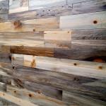 Beetle Kill Pine wall panels