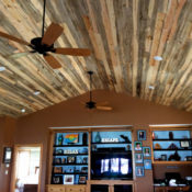 blue stain pine T&G ceiling