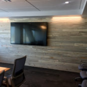 blue pine office wall