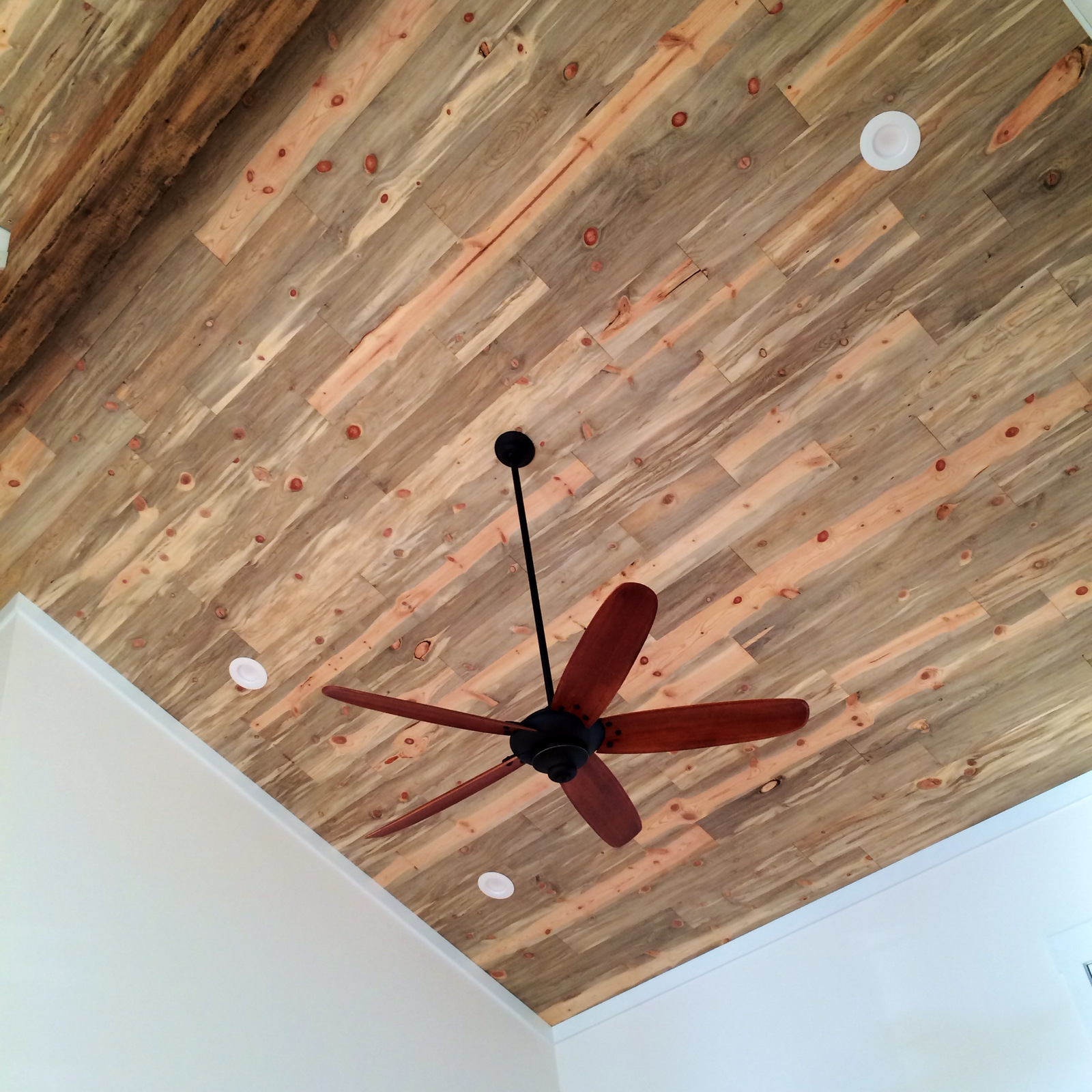 Blue Stain Pine Wood Ceiling